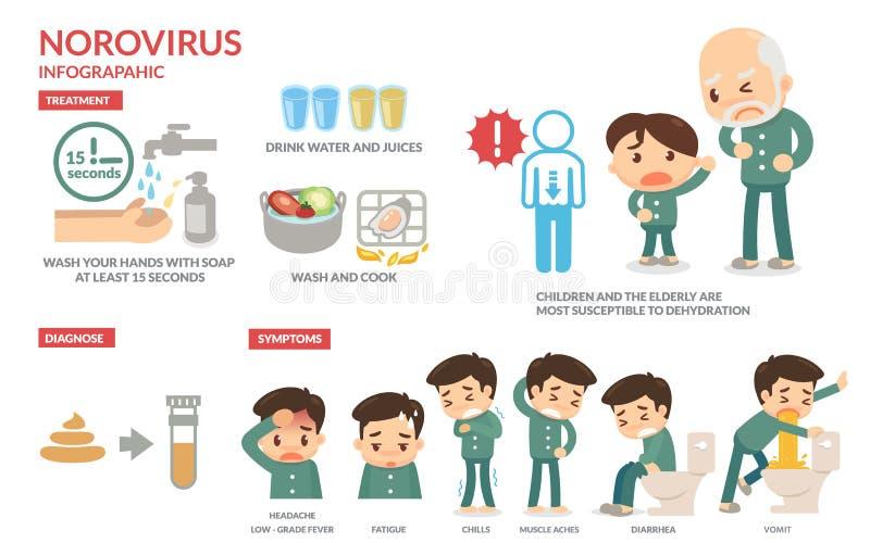 Norovirus Infographic fotos de archivo