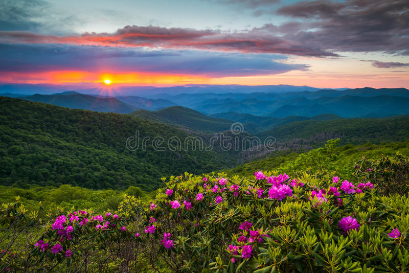 Norr Carolina Blue Ridge Parkway Spring blommar det sceniska berget arkivbild