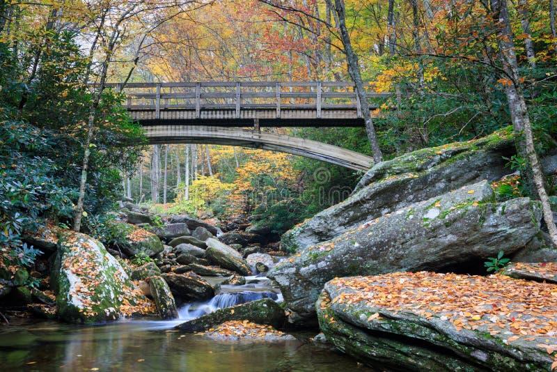 Norr Carolina Boone Fork Creek Autumn arkivbild
