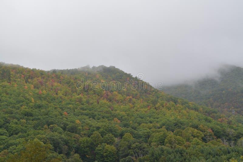 Norr Carolina Mountains i nedgångmorgondimman royaltyfri fotografi