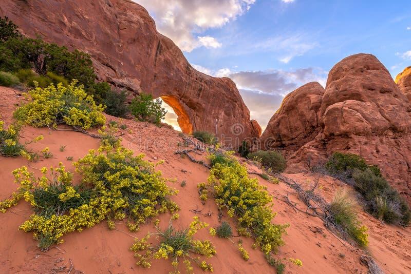 Norr fönster, bågar nationalpark, Utah royaltyfri foto