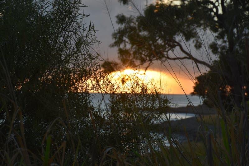 Norr Queensland strand royaltyfri bild