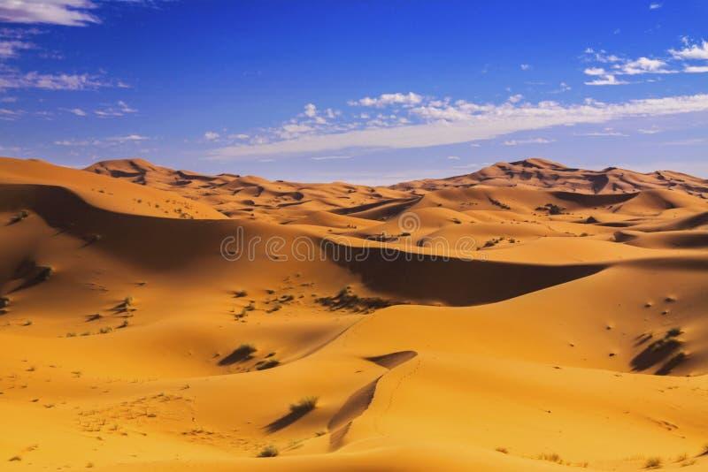Norr Sahara Distant Desert Landscape royaltyfria bilder