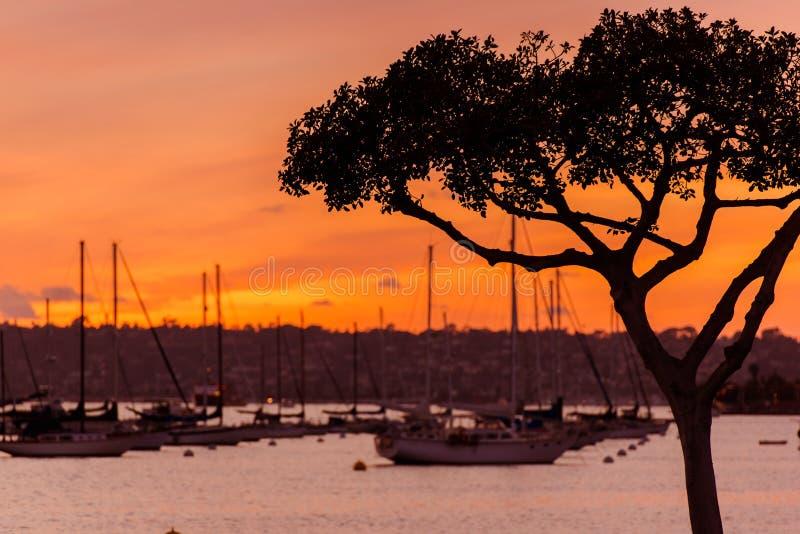 Norr San Diego Bay Sunset arkivfoto