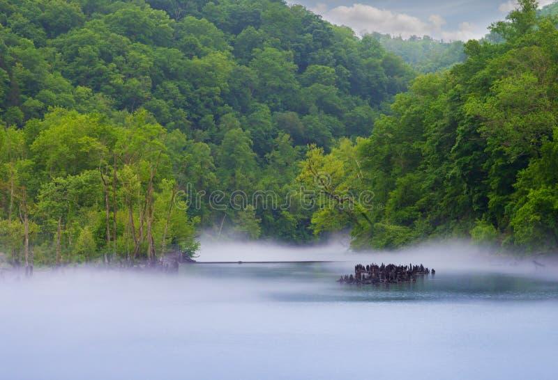 Norris Dam stock afbeeldingen