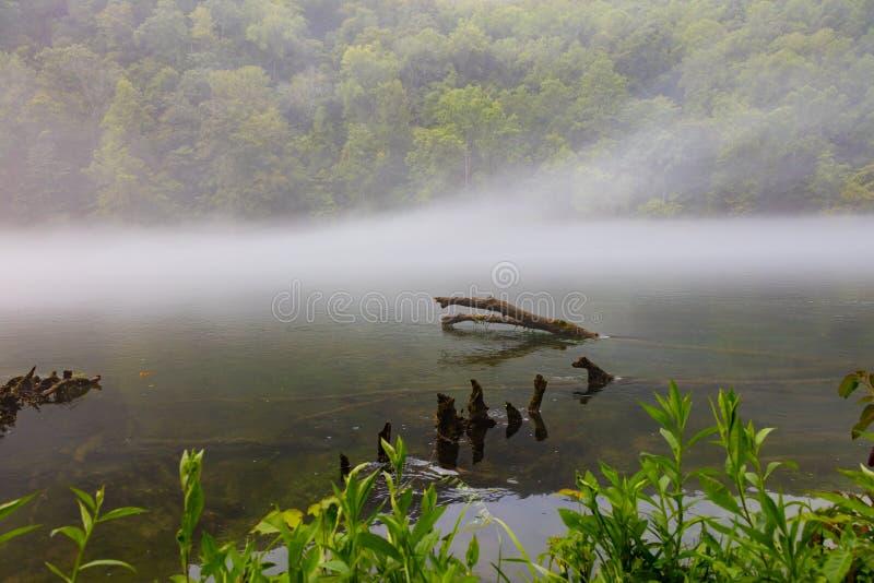 Norris Dam State Park royalty-vrije stock foto