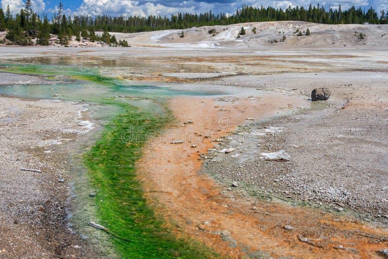 Norris Geyser Basin bij het Nationale Park Wyoming de V.S. van Yellowstone royalty-vrije stock afbeeldingen