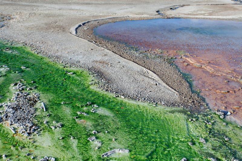 Norris Geyser Basin, het Nationale Park van Yellowstone, Wyoming stock afbeelding