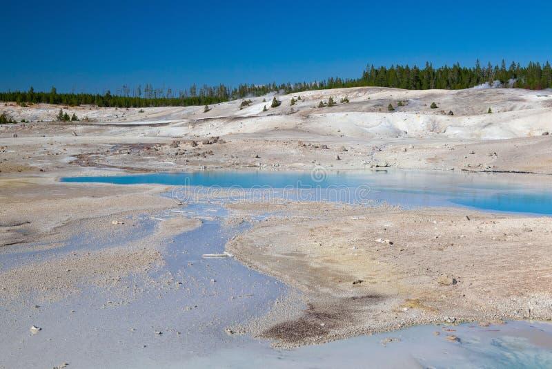 Norris Geyser Basin in het Nationale Park van Yellowstone, Wyoming, de V.S. royalty-vrije stock fotografie