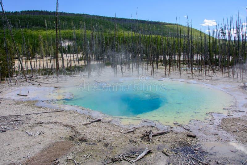 Norris Geyser Basin, het Nationale Park van Yellowstone, Wyoming, de V.S. royalty-vrije stock foto