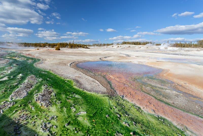 Norris Geyser Basin Yellowstone, Wyoming, de V.S. stock afbeeldingen