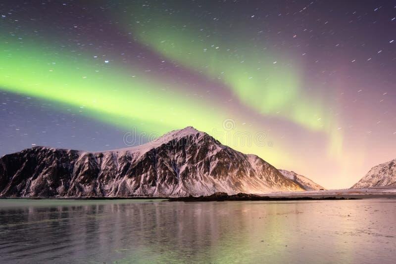 Norrsken på de Lofoten öarna, Norge Gröna nordliga ljus ovanför berg royaltyfri foto