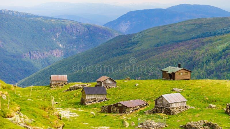 Norsk bergsommarlantg?rd royaltyfri fotografi
