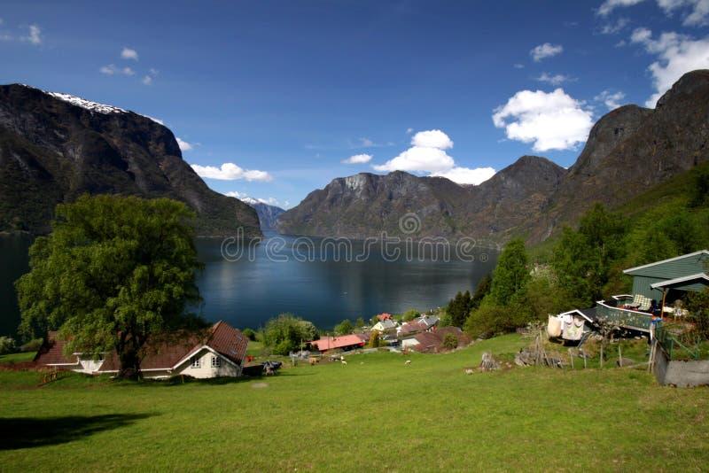 Norsk fjord royaltyfri bild