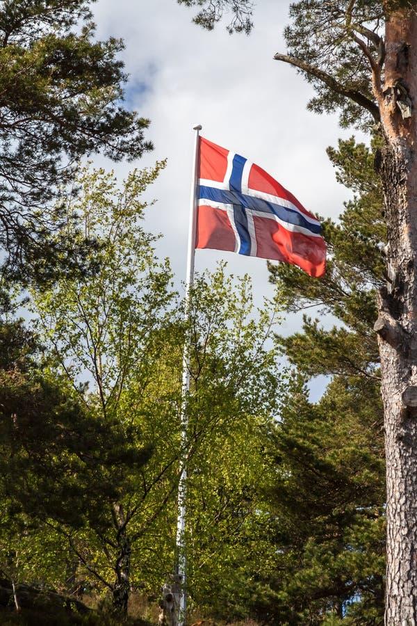 Norsk flagga i trädgården royaltyfri foto