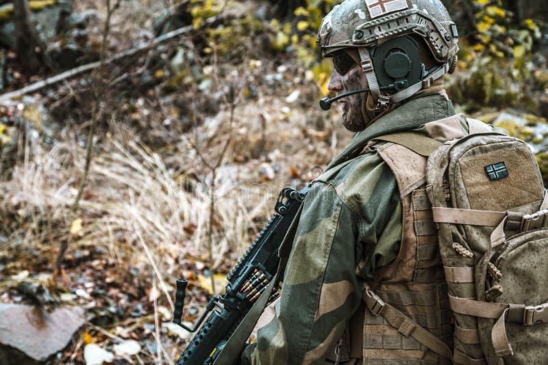Norsk soldat i skogen arkivbild