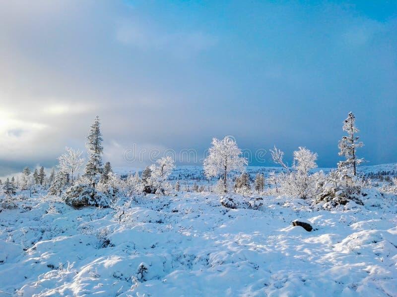 norsk vinter arkivbilder