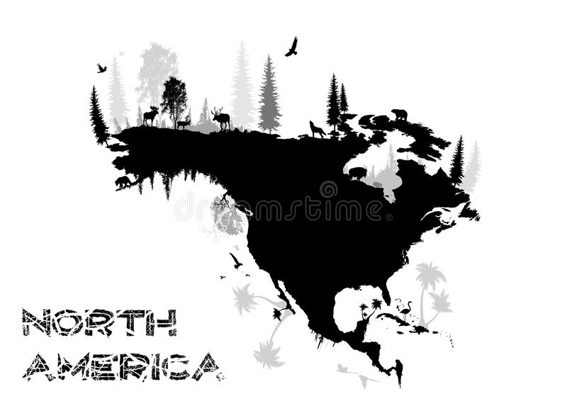 Download North America stock vector. Image of funny, bison, mammals - 10773558