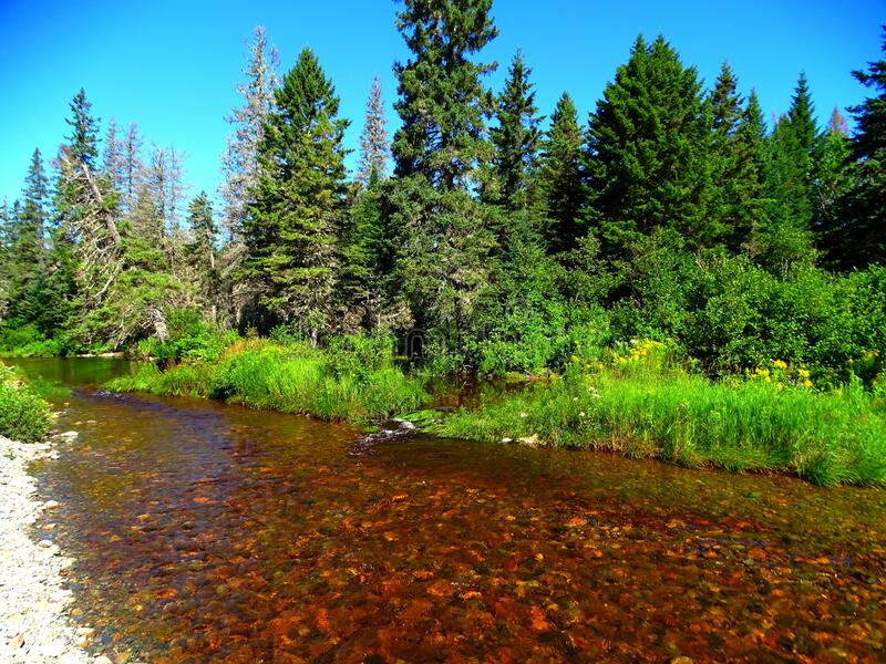 North America, Canada, New Brunswick, Fundy National Park, Forks and Orignal Trails, Broad River. North America, Canada, Province of New Brunswick, Fundy royalty free stock image