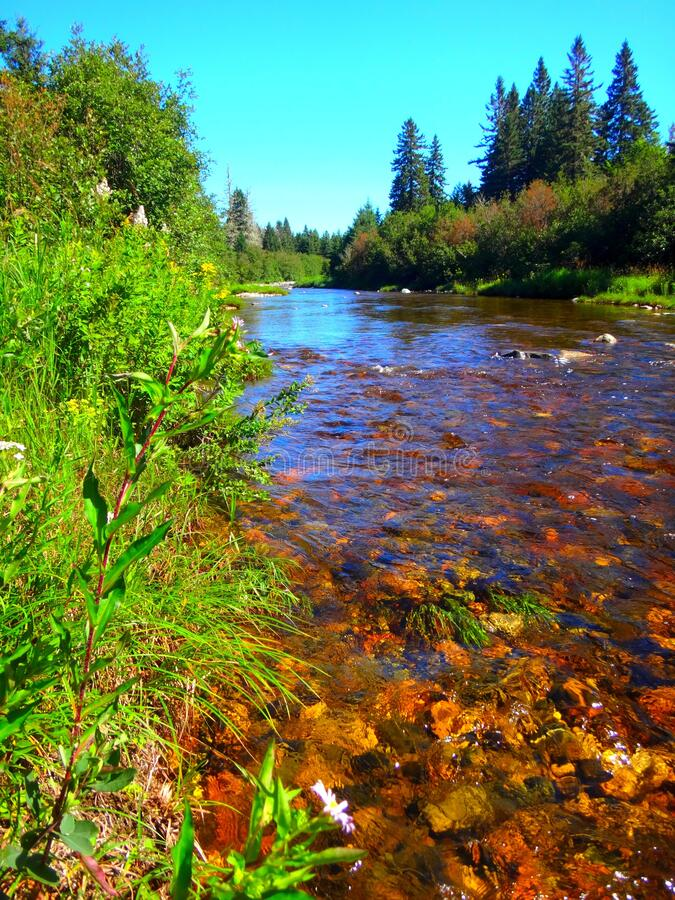North America, Canada, New Brunswick, Fundy National Park, Forks and Orignal Trails, Broad River. North America, Canada, Province of New Brunswick, Fundy stock photo