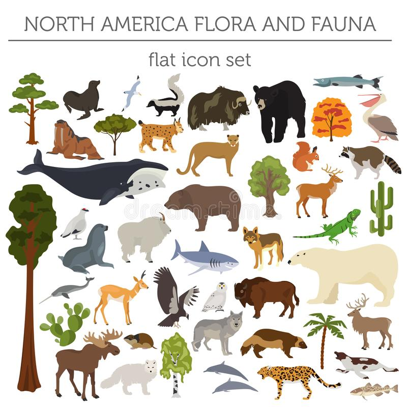 North America flora and fauna flat elements. Animals, birds and. Sea life big set. Build your geography infographics collection. Vector illustration royalty free illustration