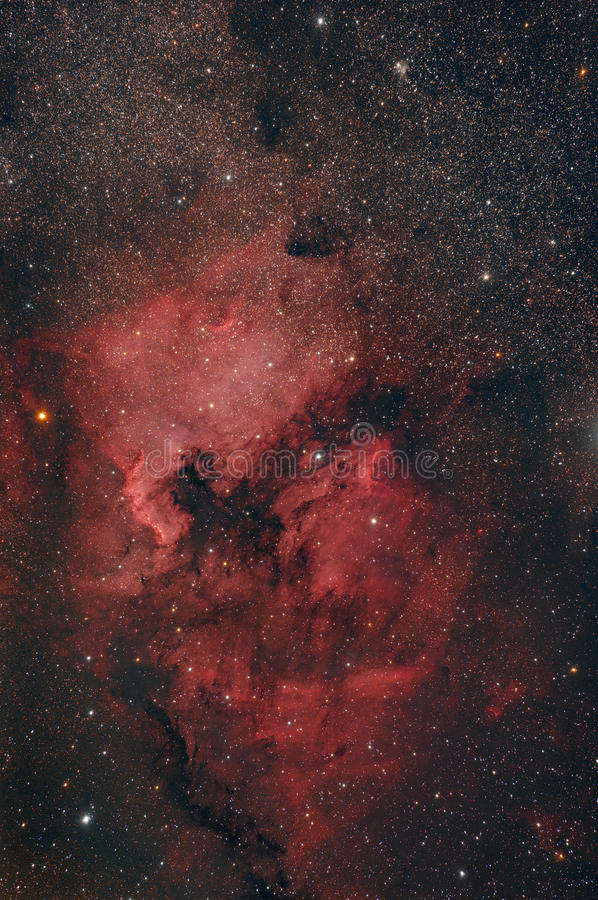North America Nebula. Big North America Nebula in a starry sky royalty free stock image