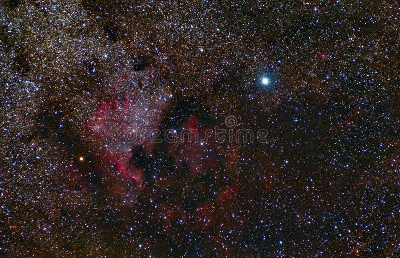 North America Nebula. Cygnus Constellation. Deneb. Telescope astrophotography vector illustration