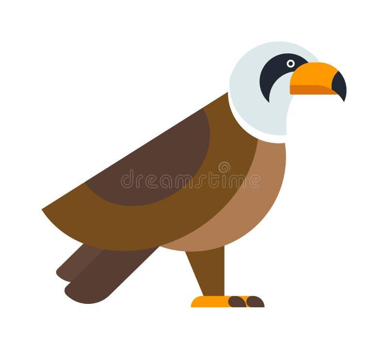 North American bald eagle raptor wildlife bird and hawk predator animal cartoon vector. stock illustration