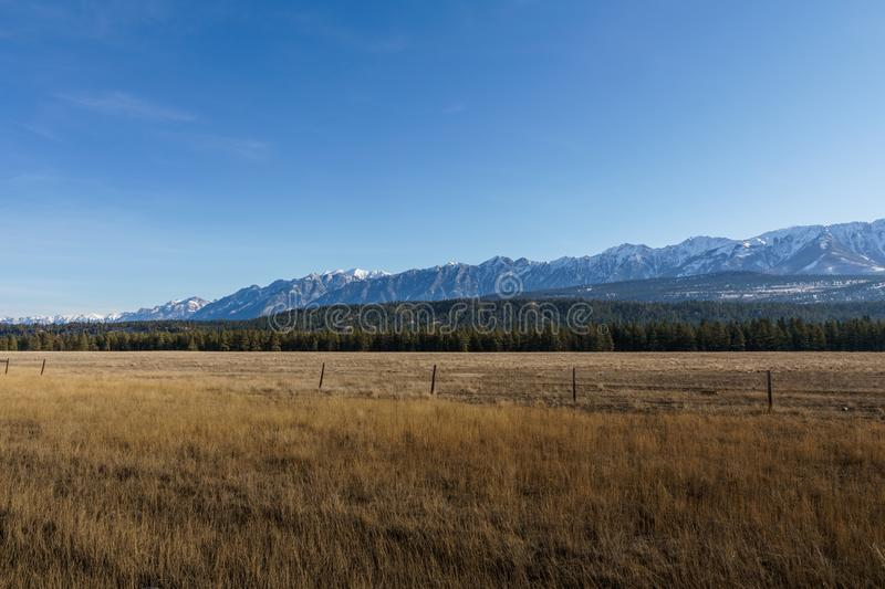 North American steppe or vegetation zone on east of british columbia canada. Climate ecosystem grassland park savannah sky field landscape nature rural panorama royalty free stock photo