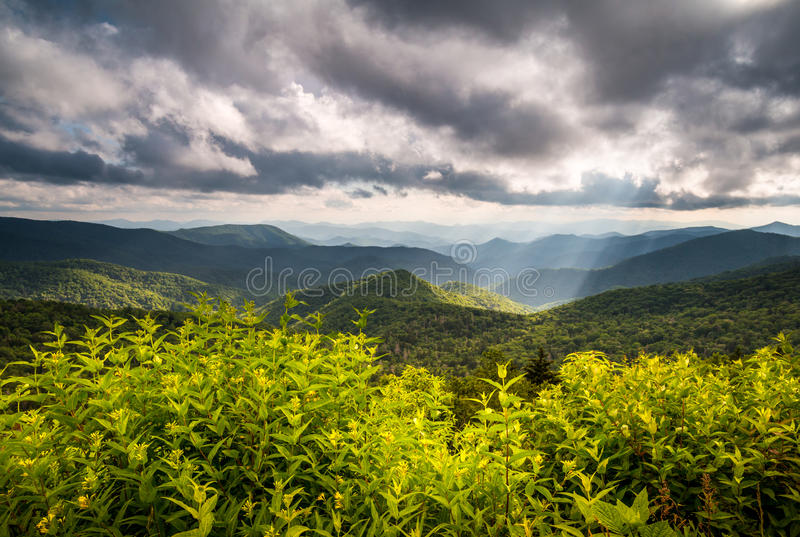 North Carolina Blue Ridge Parkway Scenic Nature Appalachian Mountain Landscape. With summer flowers and sun rays south of Asheville NC stock image