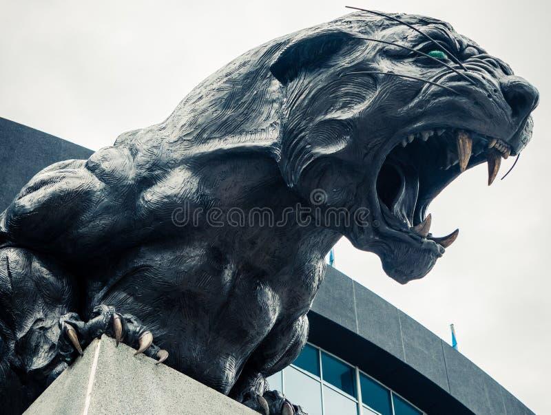 North Carolina Panthers football panther statue roaring fierce. Carolina Panthers black cat statue roaring and baring teeth in front of football stadium stock image