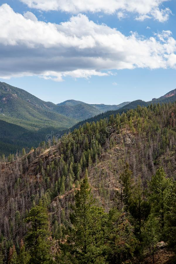 North cheyenne canyon canon colorado springs. Mountain landscape forest views of vacation travel stock photo