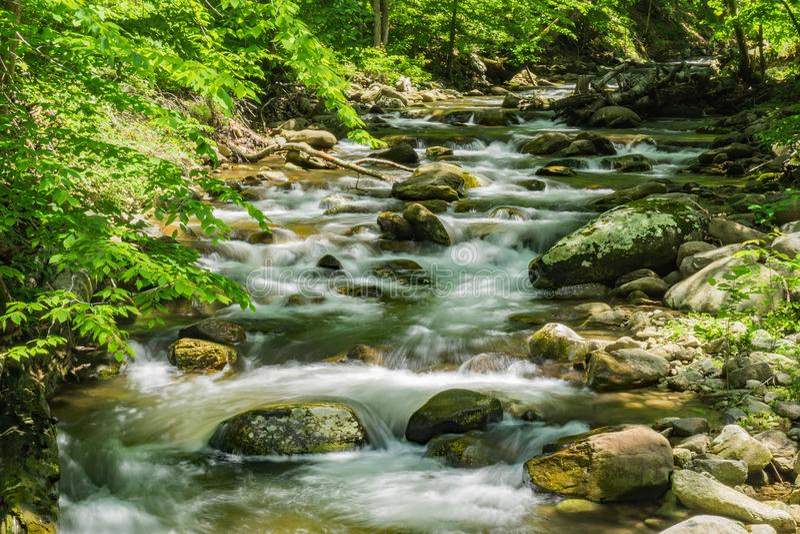 North Creek - Wild Mountain Trout Stream - 4. North Creek is a popular wild mountain trout stream located in Botetourt County, Virginia, USA royalty free stock photos