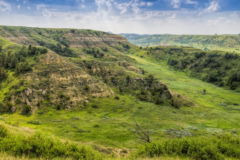 North Dakota Badlands with lush meadows. North Dakota Badlands with green meadow in foreground royalty free stock images
