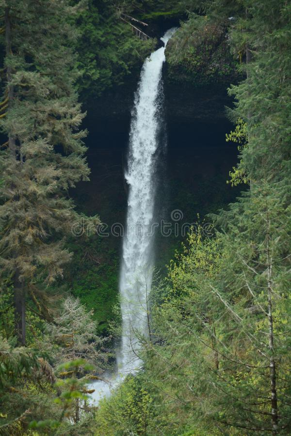 North Falls flows off lava cliff, Silver Falls State Park, Oregon stock photo