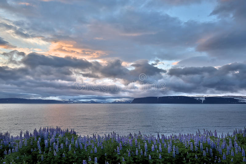 North Iceland royalty free stock image