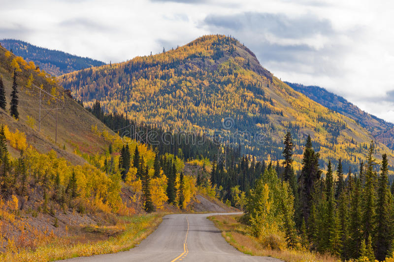 North Klondike Highway golden taiga Yukon Canada. Empty road through autumn gold fall colored boreal forest taiga hills at North Klondike Highway, Yukon royalty free stock photos