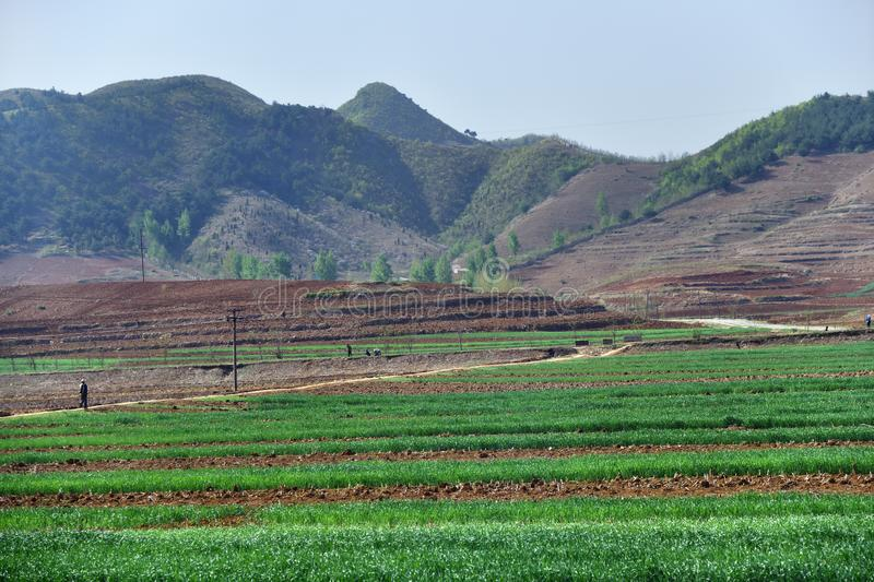 North Korea countryside landscape royalty free stock image