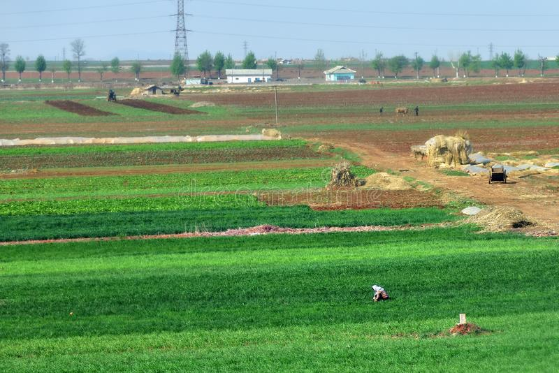 North Korea countryside landscape royalty free stock photo