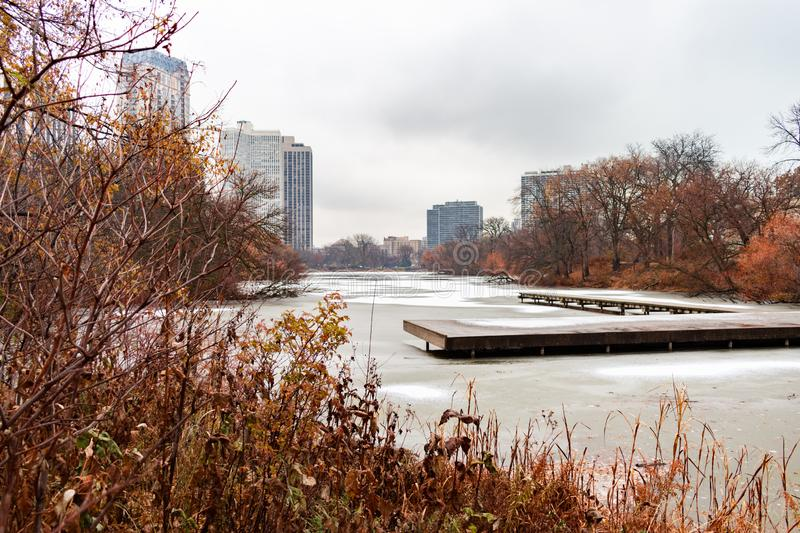 North Pond in Lincoln Park Chicago Surrounded by Plants and Trees in late Autumn with Snow and Ice royalty free stock photo