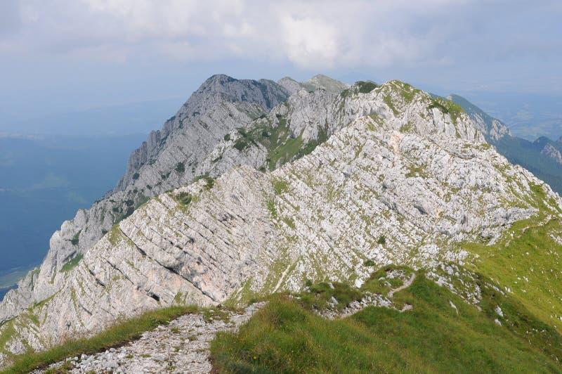 North ridge of Piatra Craiului mountains royalty free stock images