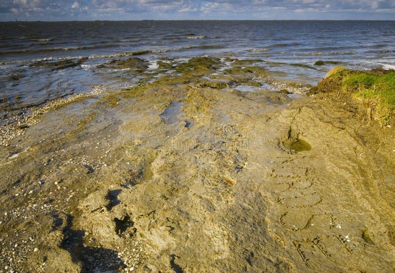 North Sea Beach At Autumn Stock Images