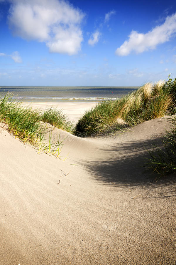 North Sea beach and dunes at Knokke-Heist stock images