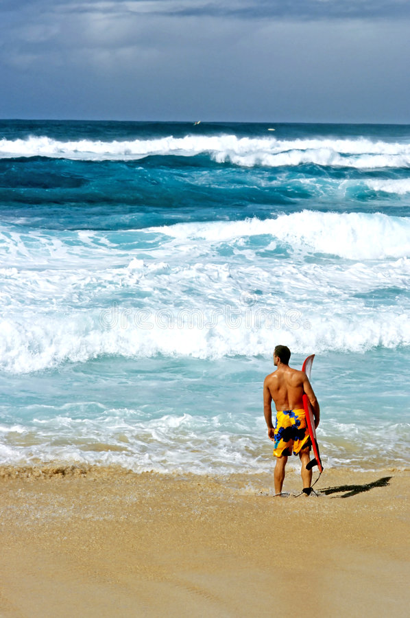 North Shore Surfer royalty free stock photography