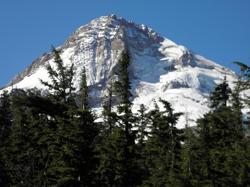The North Side of Mt. Hood, Oregon royalty free stock photos