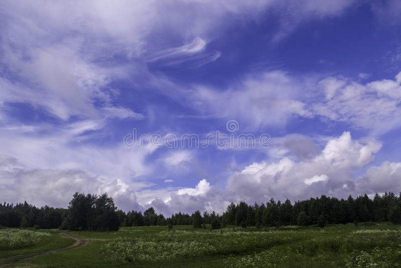 North sky royalty free stock image