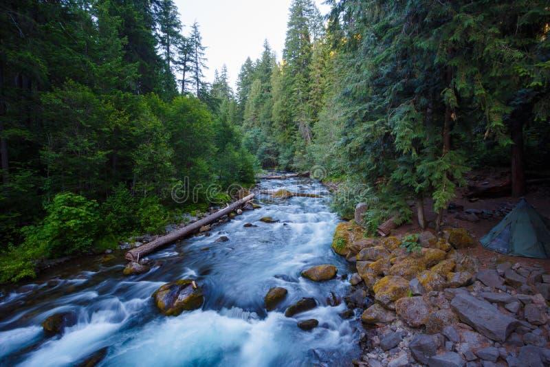 North Umpqua River Oregon stock photos