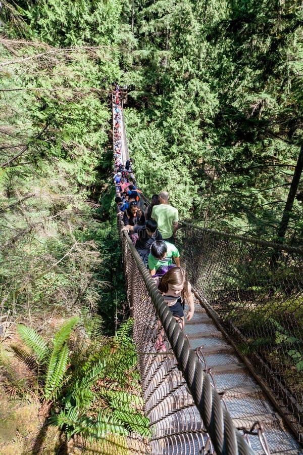 Lynn Canyon Suspension Bridge royalty free stock image