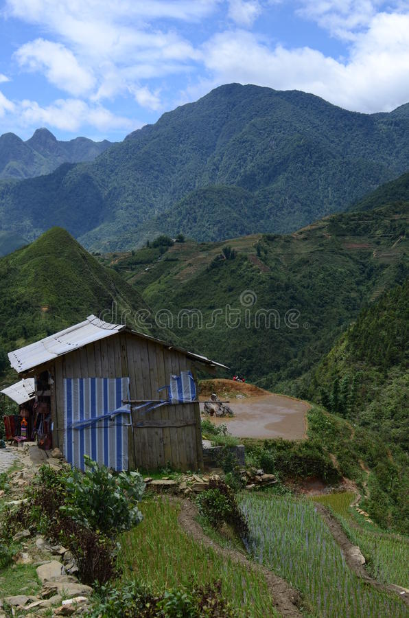 North Vietnam Landscape. Green mountains and rice fields near Sapa, Vietnam stock images