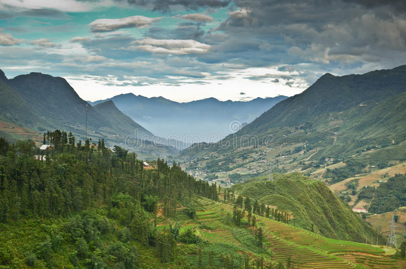 North Vietnam Landscape. Green mountains and rice fields near Sapa, Vietnam stock photo